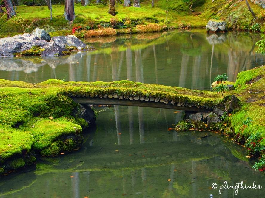 Moss Bridge in Moss Garden - Kokedera Kyoto