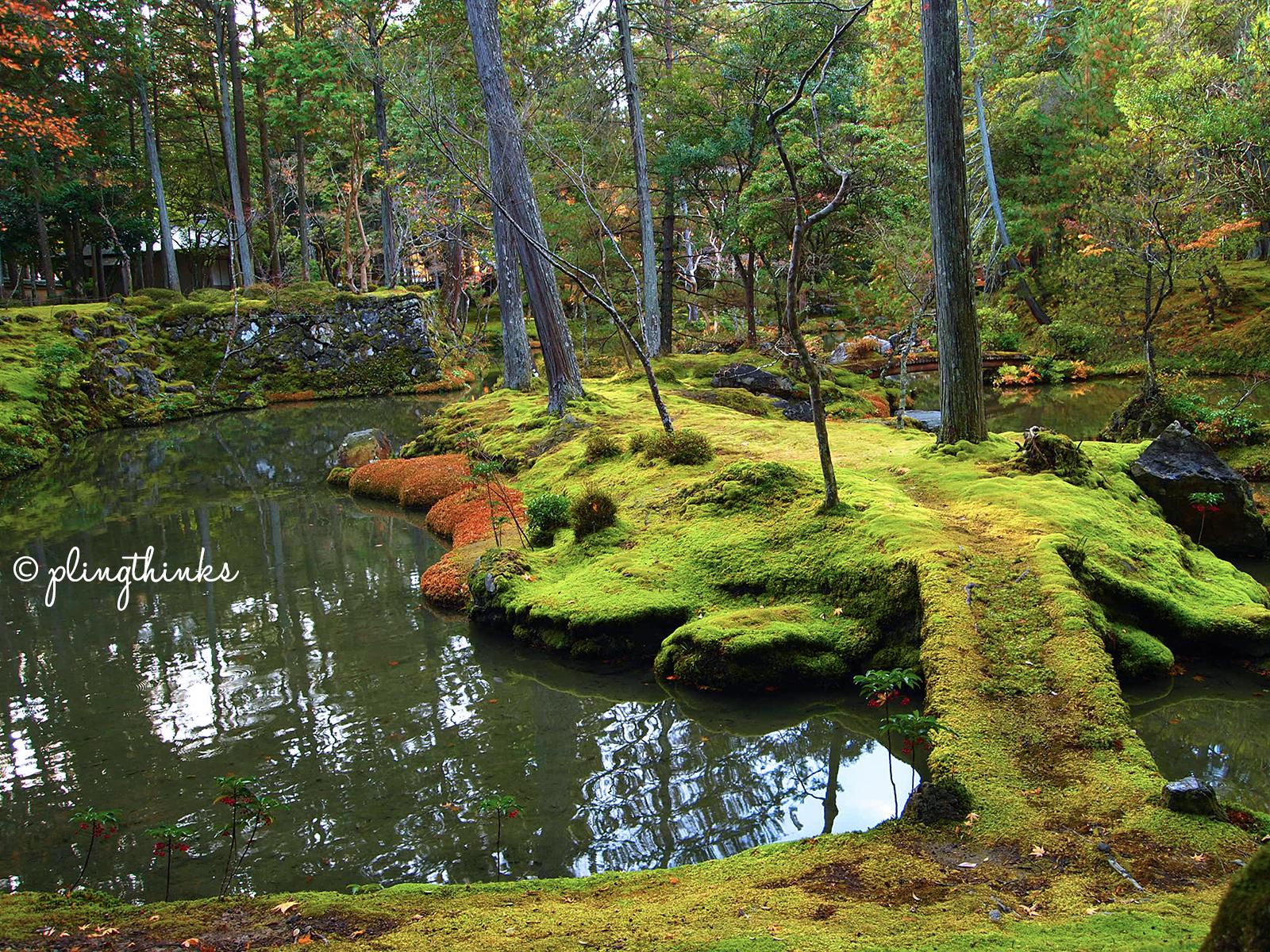 Moss Garden UNESCO Heritage Site   Kyoto