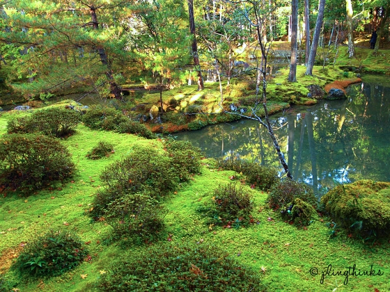Moss Garden - Saihoji Kyoto Japan