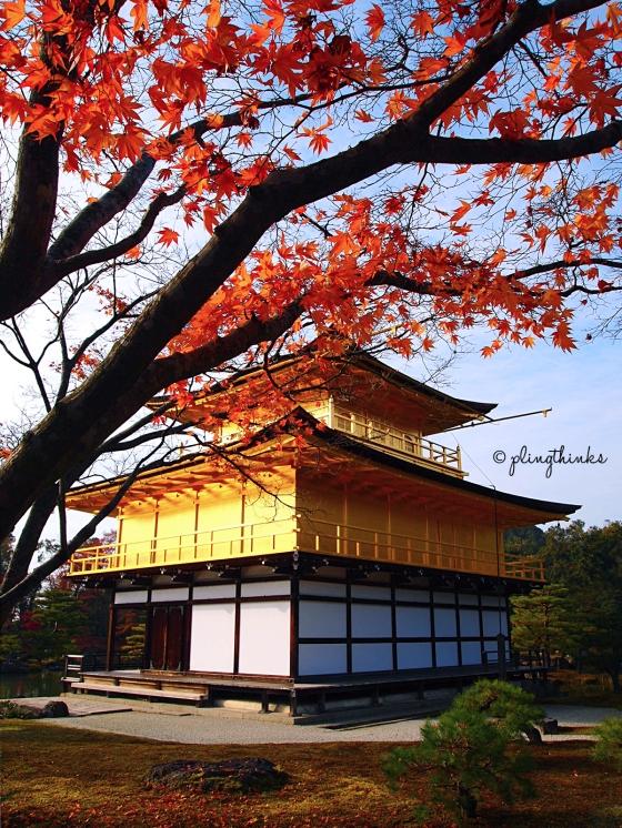 Kinkaku Ji Kyoto S Golden Pavilion And Its Perfect