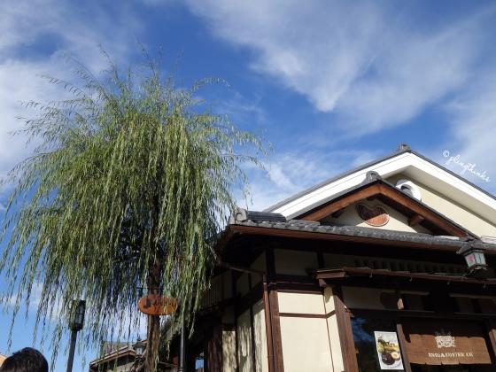 Inoda Coffee Kiyomizu Willow Tree - Kyoto